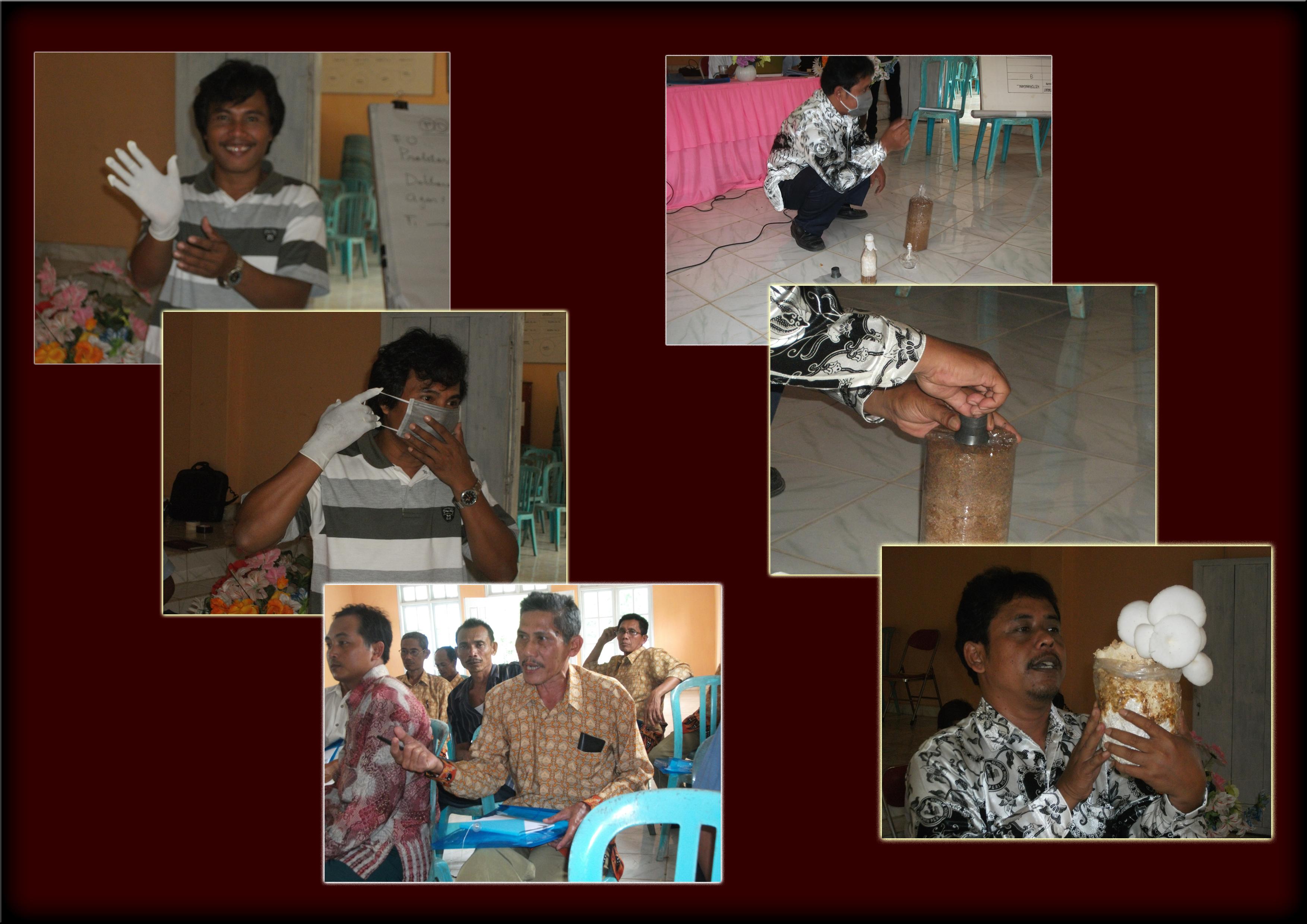Dua Hari Pelatihan Jamur Tiram di Desa Kibang